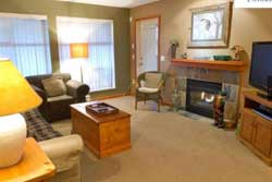 pet friendly vacation rental in whistler canada, vacation rentals with dogs allowed in whistler canada